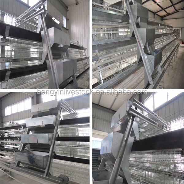 Poultry Farm House Design Layer Egg Chicken Cage
