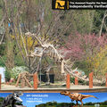 My dino-children attraction amusement park artificial skeleton model