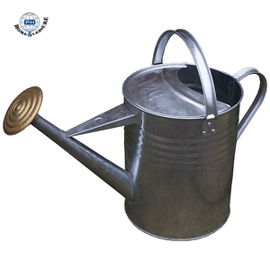 2 Gallon Traditional Garden Galvanized Metal Water Can With removable Rose