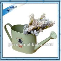 Decorative cheap oval metal watering can