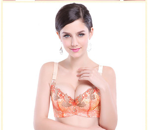 Super luxury scorcher embroidery girls beautiful bra sexy bra design