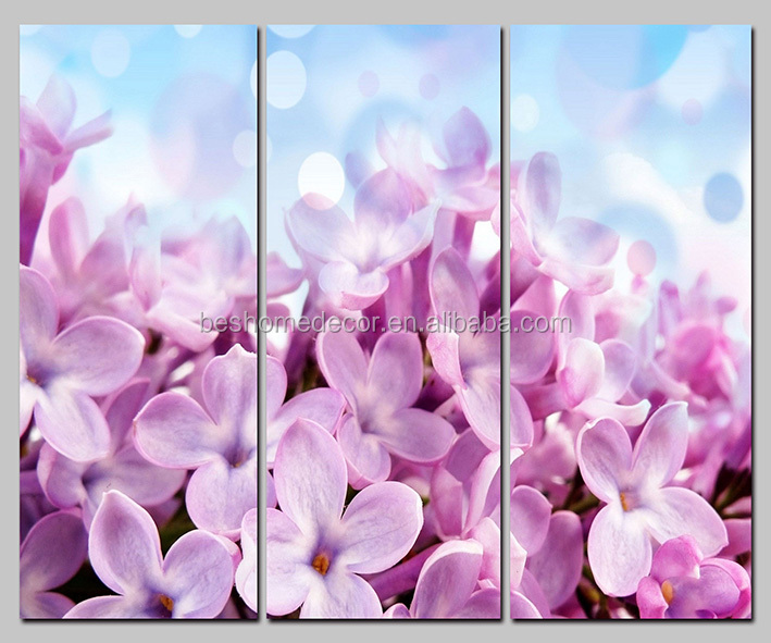 Frameless Multi-panel Flowers Canvas Painting Wall Art Picture