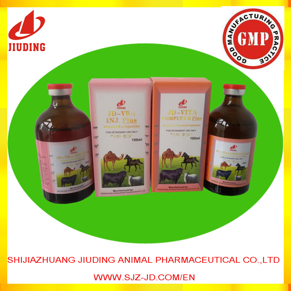 Vitamin Injection Vitamin B12 Complex Vitamin B