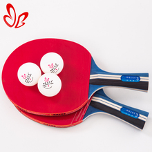 Professional 2 Bats and 3 Balls Set Table Tennis Bats