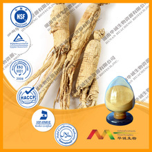ISO/KOSHER/HACCP/cGMP Best Price Panax Ginseng Root Extract Powder