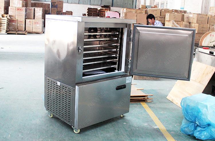 NEWEEK filetes de peixe camarão equipamento de congelamento de carne fresca para venda