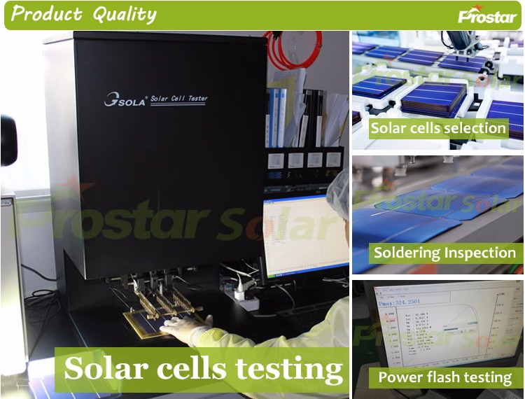 China Top 10 Pv Supplier Renesola 300w Poly Home Solar Panel