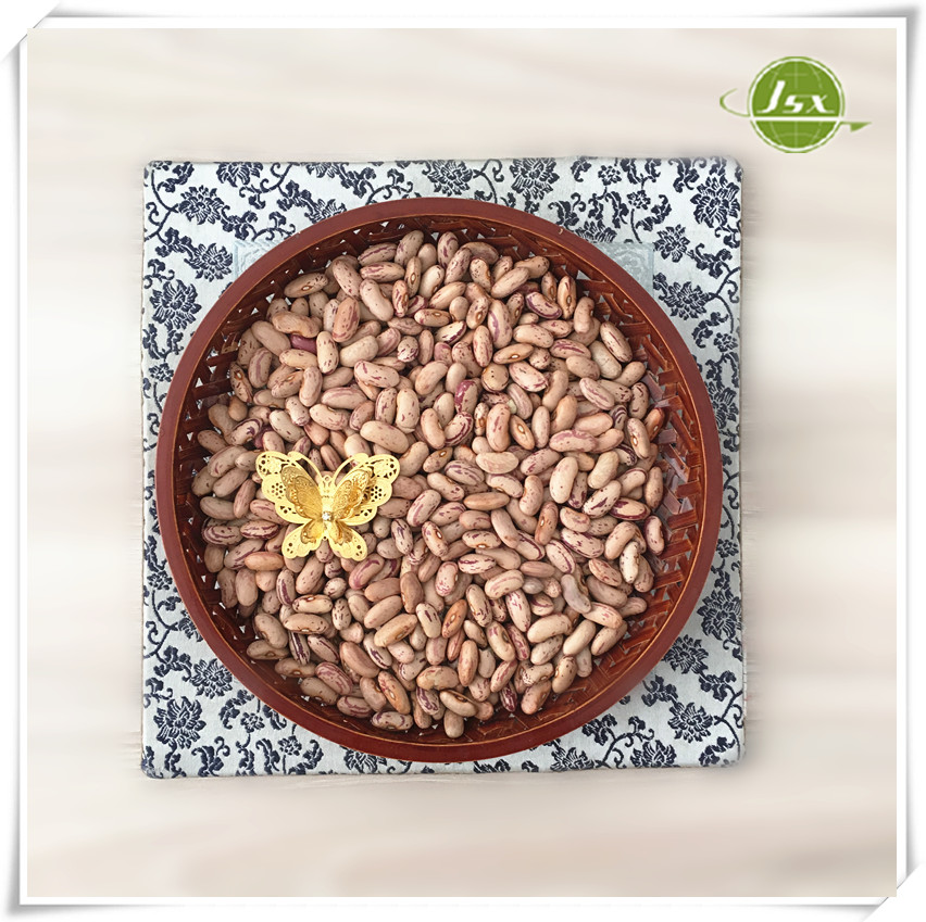 JSX Dried Type and Kidney Beans Product Type Light Speckl Kidney Beans or 2014 White Speckled Kidney Beans For India Market