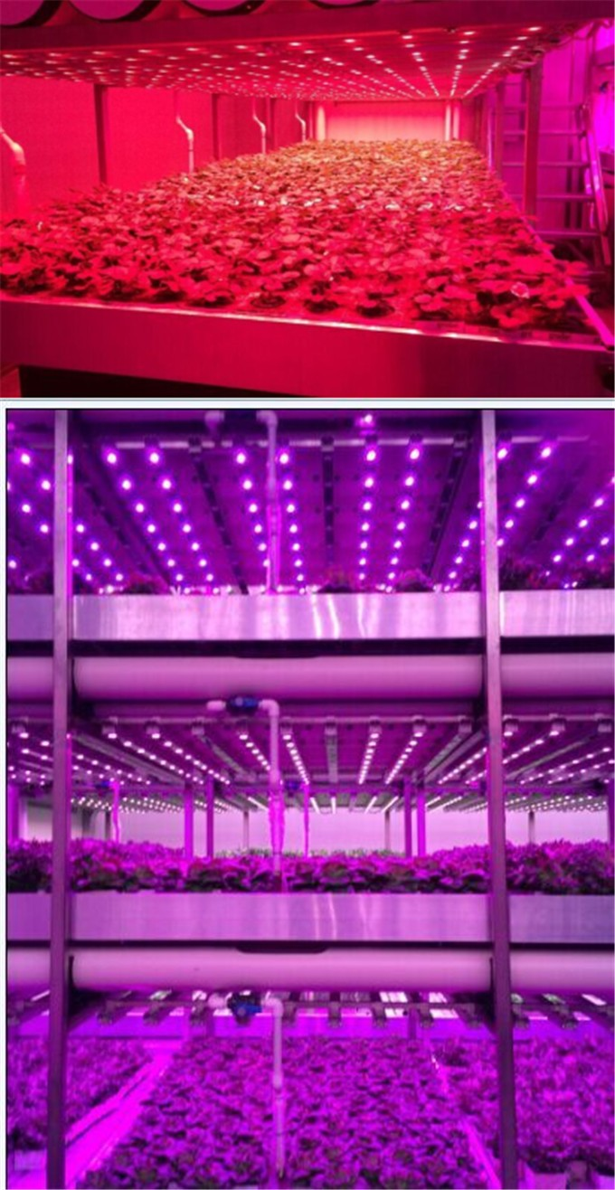 Commercial greenhouse lighting ce rosh listed 108w vertical commercial greenhouse lighting ce rosh listed 108w vertical hydroponics systems waterproof led grow light bar mozeypictures Image collections