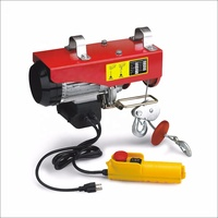 110v/220v 300kg Mini Electric Hoist