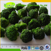 Names All Fruit Vegetables Frozen IQF Broccoli
