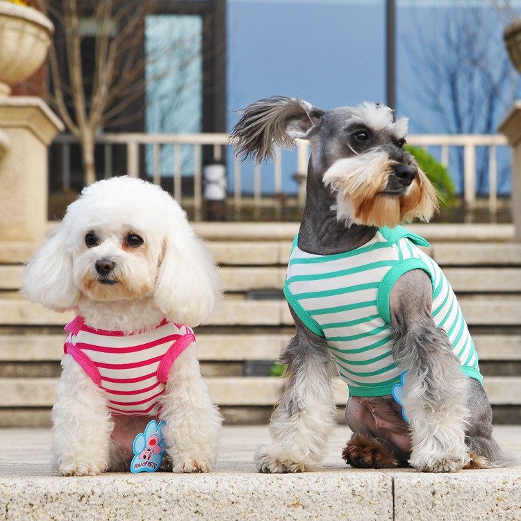 Promotion of spring and summer party striped dog vest