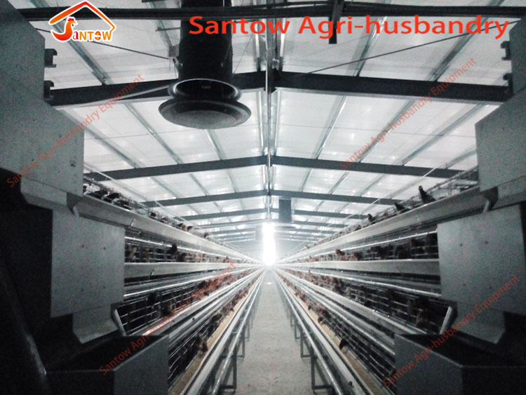 Large Scale 20000 Birds Poultry Layer Farm Chicken Cage Design Cheap Price Laying Hens Cage For Sale