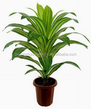 SJ 1301105 Artificial Indoor Green Plant/decorative Plastic Zamioculcas  Zamiifolia