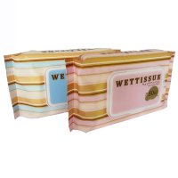 wholesale lady facial Cleaning wet wipes