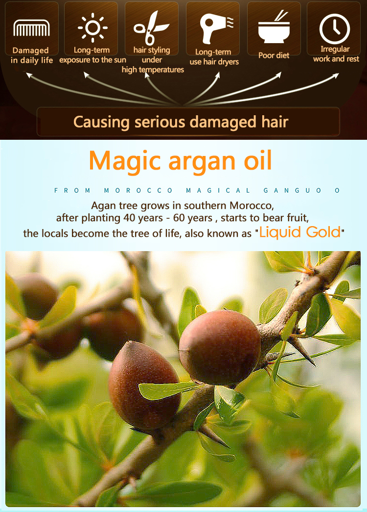 100 % pure organic oil element care treatment hair morocco argan oil for dry hair