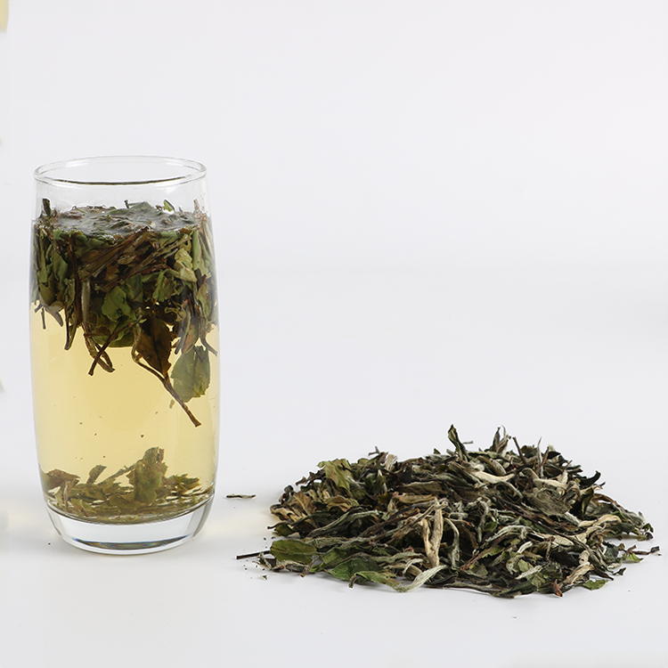 Chinese bulk Wholesale an ji white tea for health - 4uTea | 4uTea.com