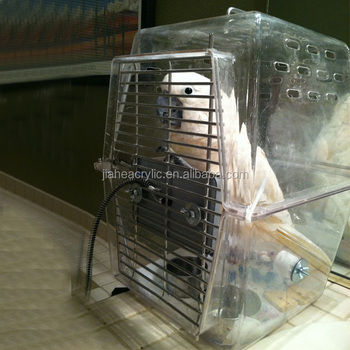 Plexiglass Parrot Cage Clear Bird Cage On Stand Perspex Bird Carrer With  Wire Mesh Iron Door - Buy Parrot Carrier,Acrylic Bird Breeding