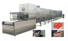20KW Continuous Tunnel microwave drying machine for fruit