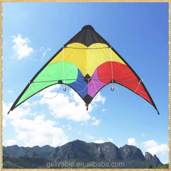 Dual Line 1.2m Small delta sport kite for sale