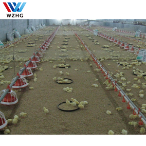steel structure design chicken farm shed different types of poultry house