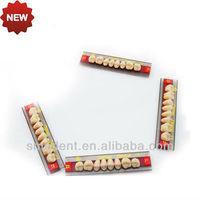 Denture Acrylic Resin Teeth/acrylic Teeth For Dentures / Smedent ...