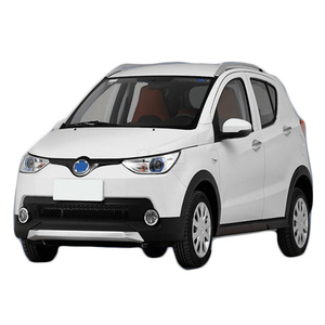 Professional production New design 25 degree electric car in china