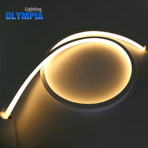 High protection IP68 rated flat led neon flex strip light
