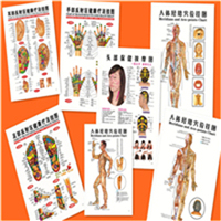 Popular Meridian Acupuncture Chart Buy Cheap Meridian Acupuncture