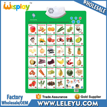 Vietnam Kids Alphabet Learning Phonetic Charts Educational Poster Toys China Supplier