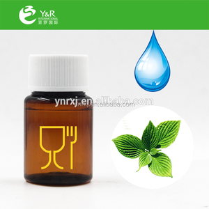 Mint Liquid Food Flavor and Variety Concentrate Liquid Flavor