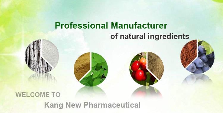 Manufacturer Supply Natural Reishi Mushroom Extract Powder