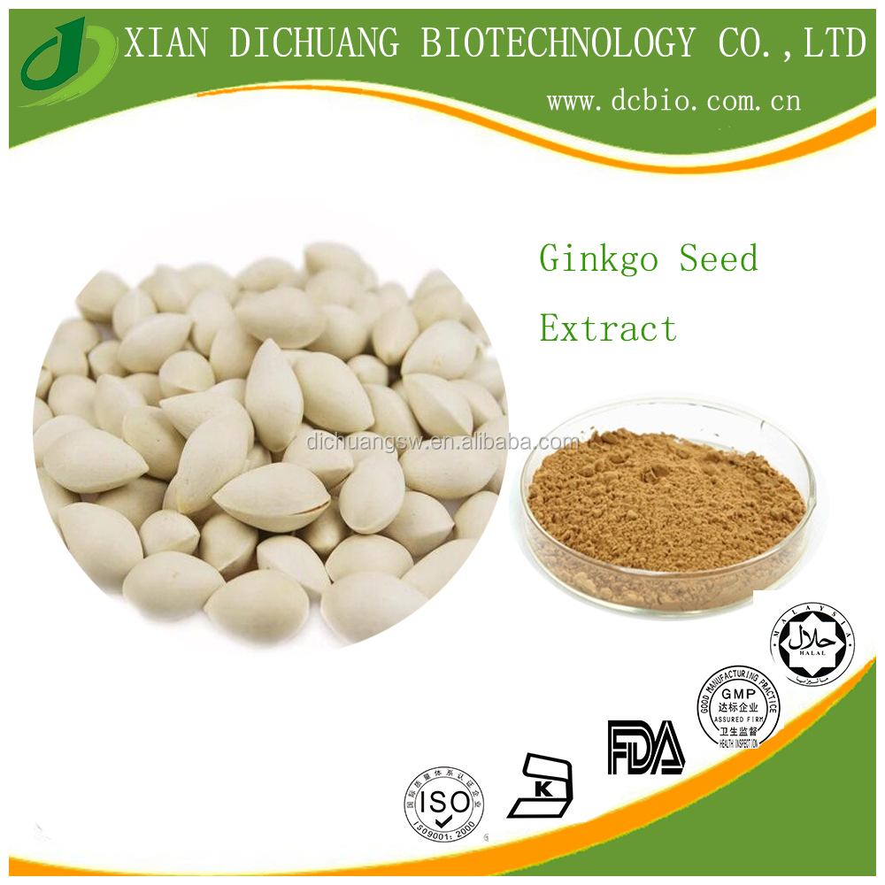 Chinese Natural Ginkgo Seed Extract powder,Ginkgo nut Extract