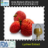 100% Natural Lychee Seed Extract 10:1