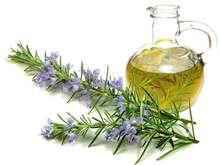 Beauty Product for Skin Hot Sales Product perfume oil pure natural Rosemary Essential oil