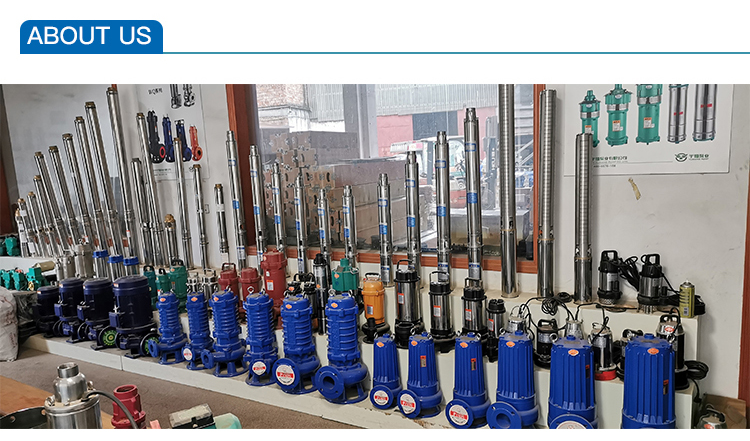 350WQ1100-10-55~500WQ2200-5-55 Electric Submersible Sewage Transfer Industrial Water Pumps