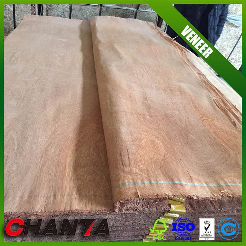 Top quality ash burl veneer for decoration