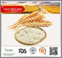 Factory Supply wholesale Dietary Supplement Hydrolyzed Wheat Protein powder 80%, Pure Vegetable Protein Bulk