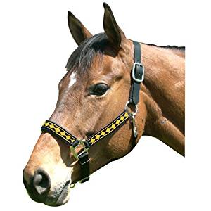 Intrepid International Leather Crown Diamond Pattern Halter