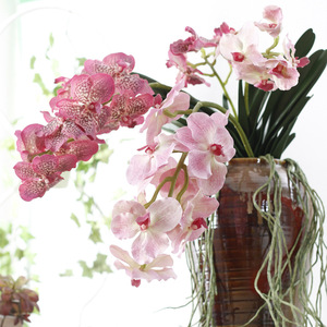 Shininglife Brand high-grade Plastic vanda with leaves and gas root for home decoration