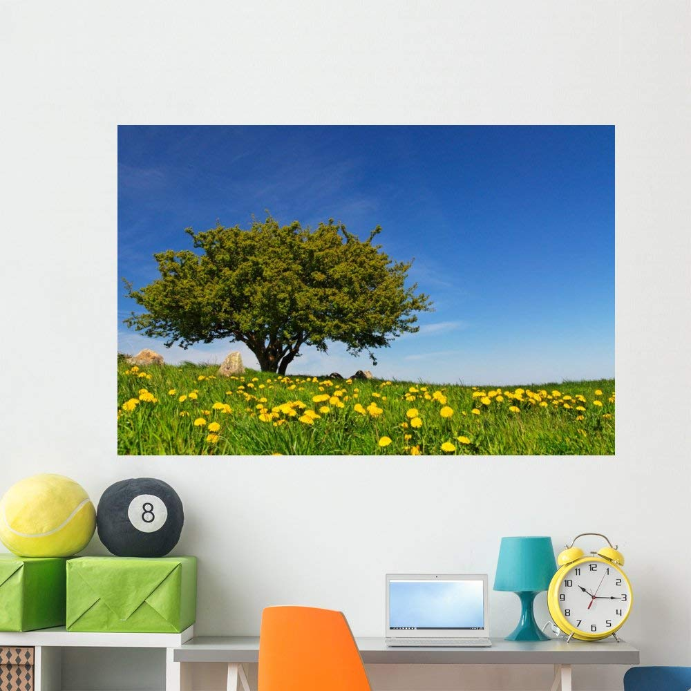 Wallmonkeys Tree Meadow Spring with Wall Mural Peel and Stick Graphic (60 in W x 40 in H) WM353214