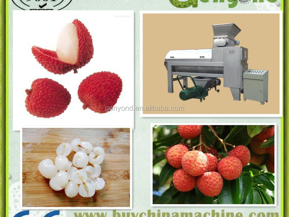 Fruit Peeling And Pitting Plant For Lychee