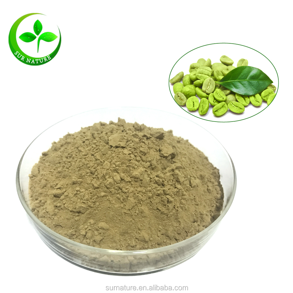 High Quality Green Coffee Bean Extract Powder Chlorogenic Acid 50
