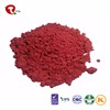 TTN Cheap Bulk Wholesale Freeze Dried Cherry Fruit Powder