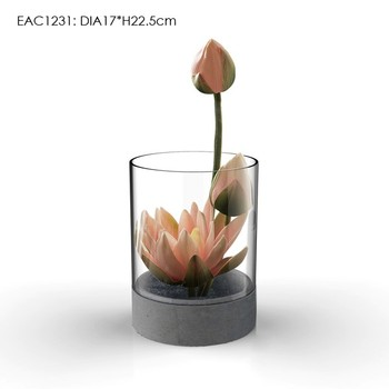 Home Decor Flower Pots Terrarium Glass Vase Glass Pot Decorative
