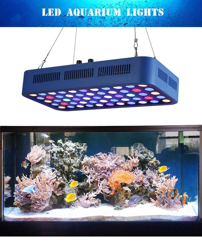 スマート wifi フルスペクトル水族館 led ライト海洋植物成長