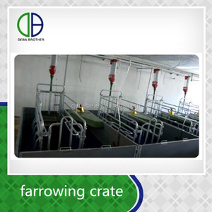 China China Supplier Low Price Pig Farrowing Stall