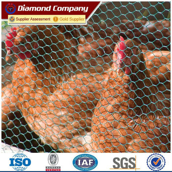 lowes price small hole chicken wire mesh roll for kenya farms ...