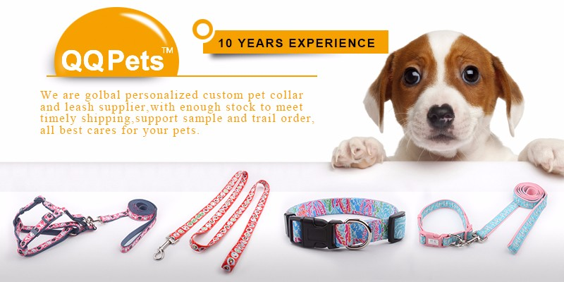 Free pet supplies sample padded dog collars sublimation logo leashes stock wholesale