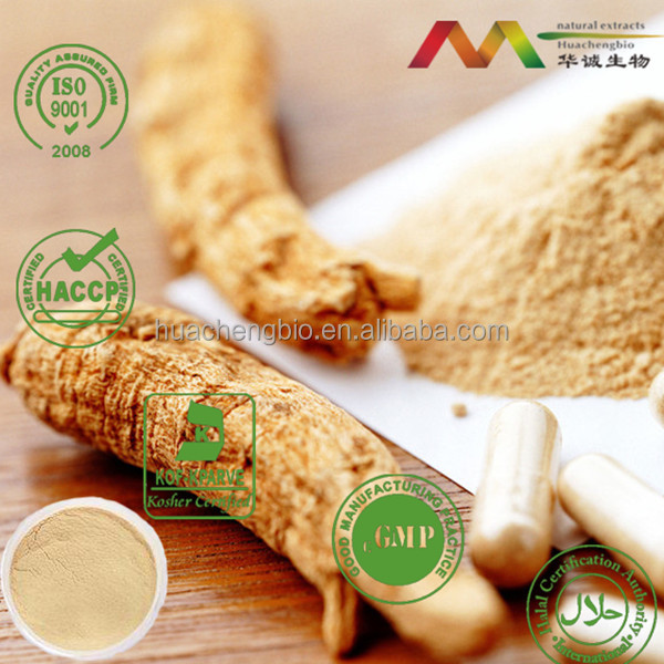 Natural ginseng root anti-aging Panax ginseng C.A. Meyer